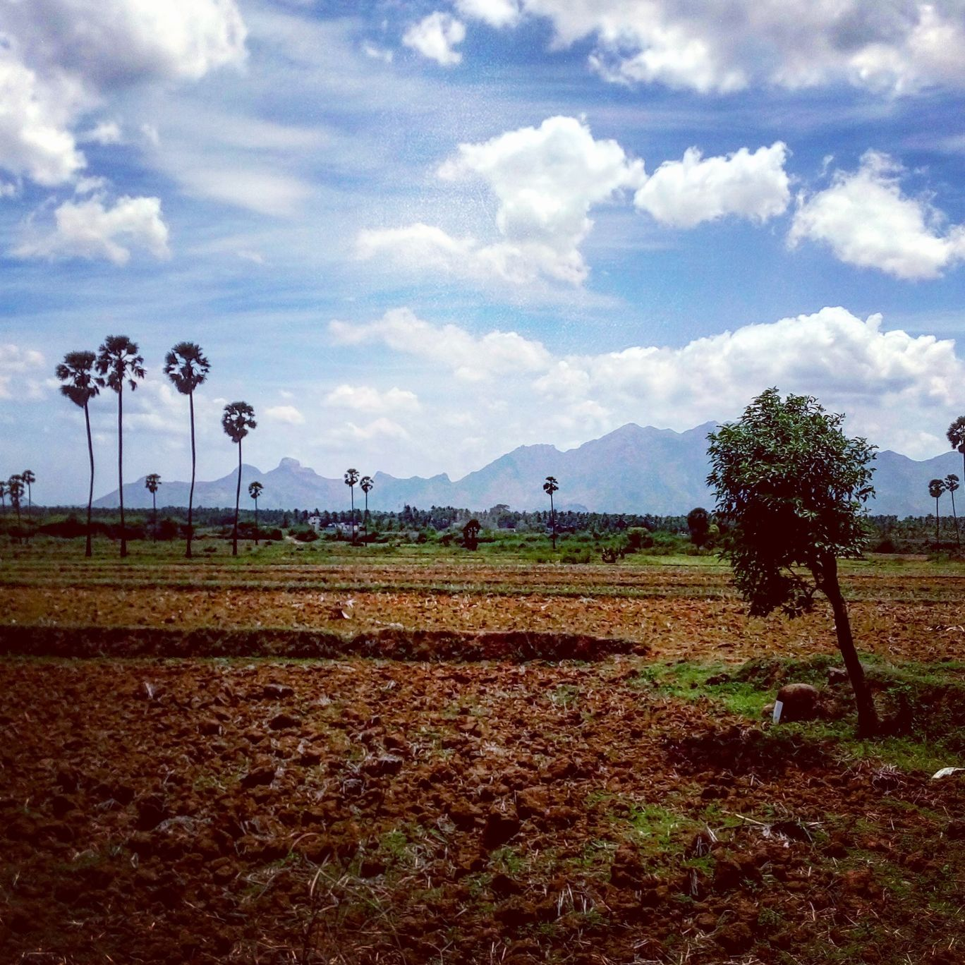 Photo of Nagercoil By Gokul Rajendren