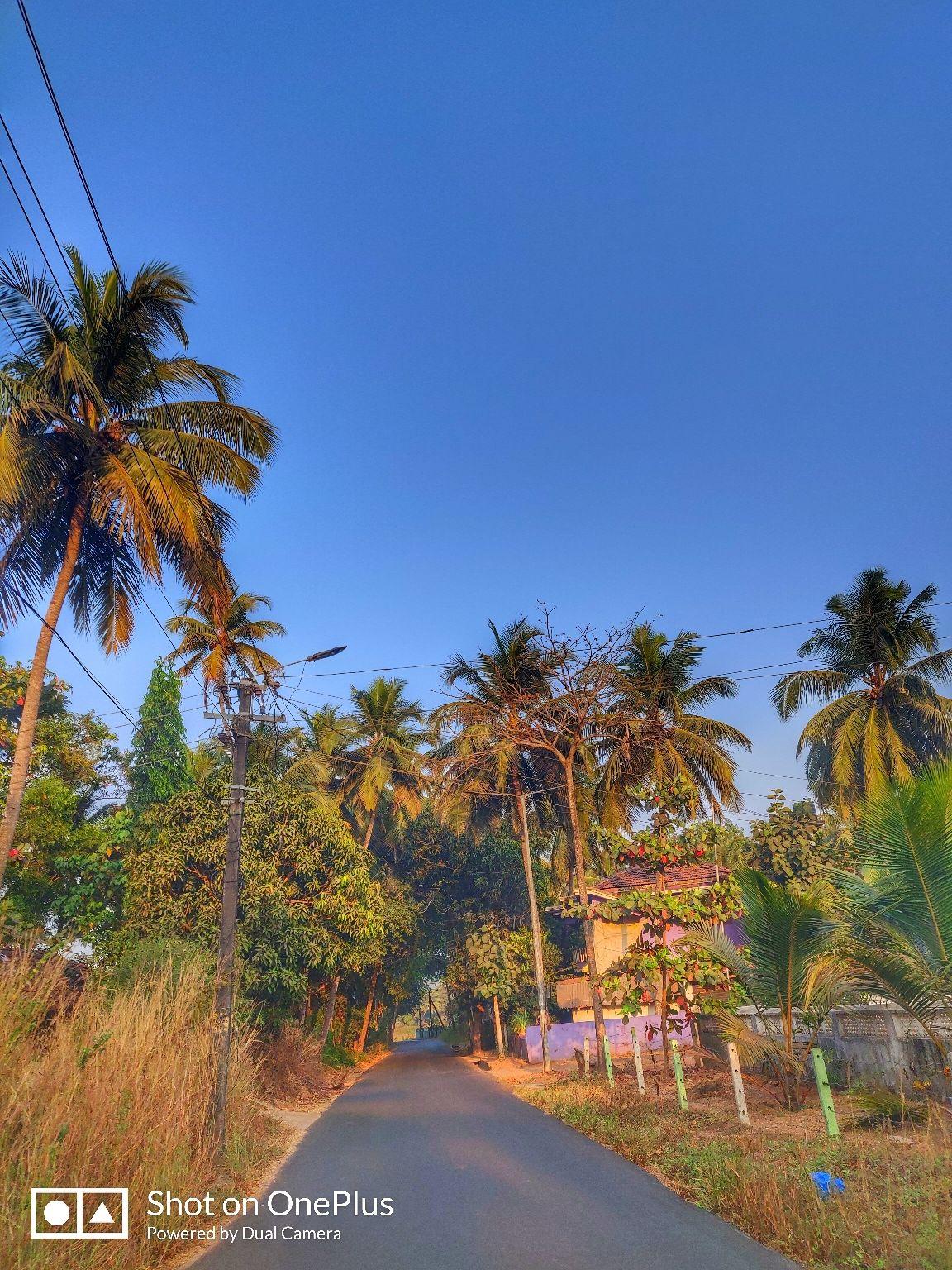Photo of South Goa By Monica Rai