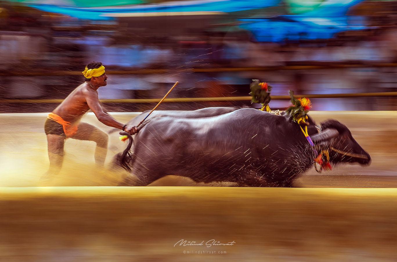 Photo of Karnataka By Milind Shirsat