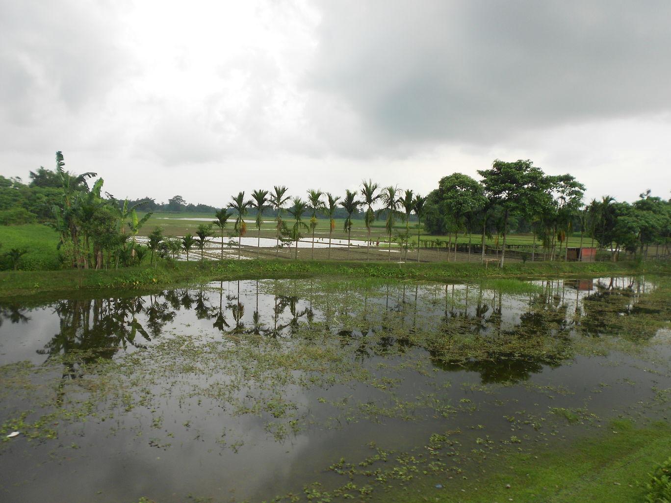 Photo of Nagaland By suraj singh