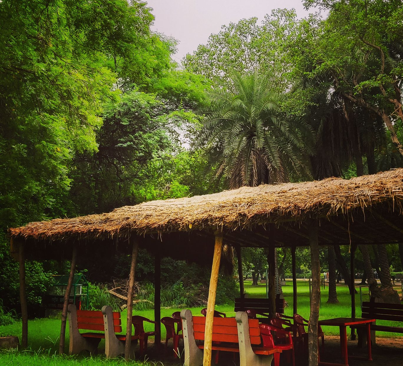 Photo of Delhi By garima burman