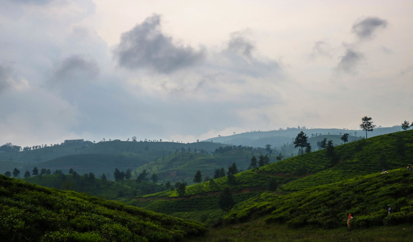 Photo of Valparai By Maha Vishnu