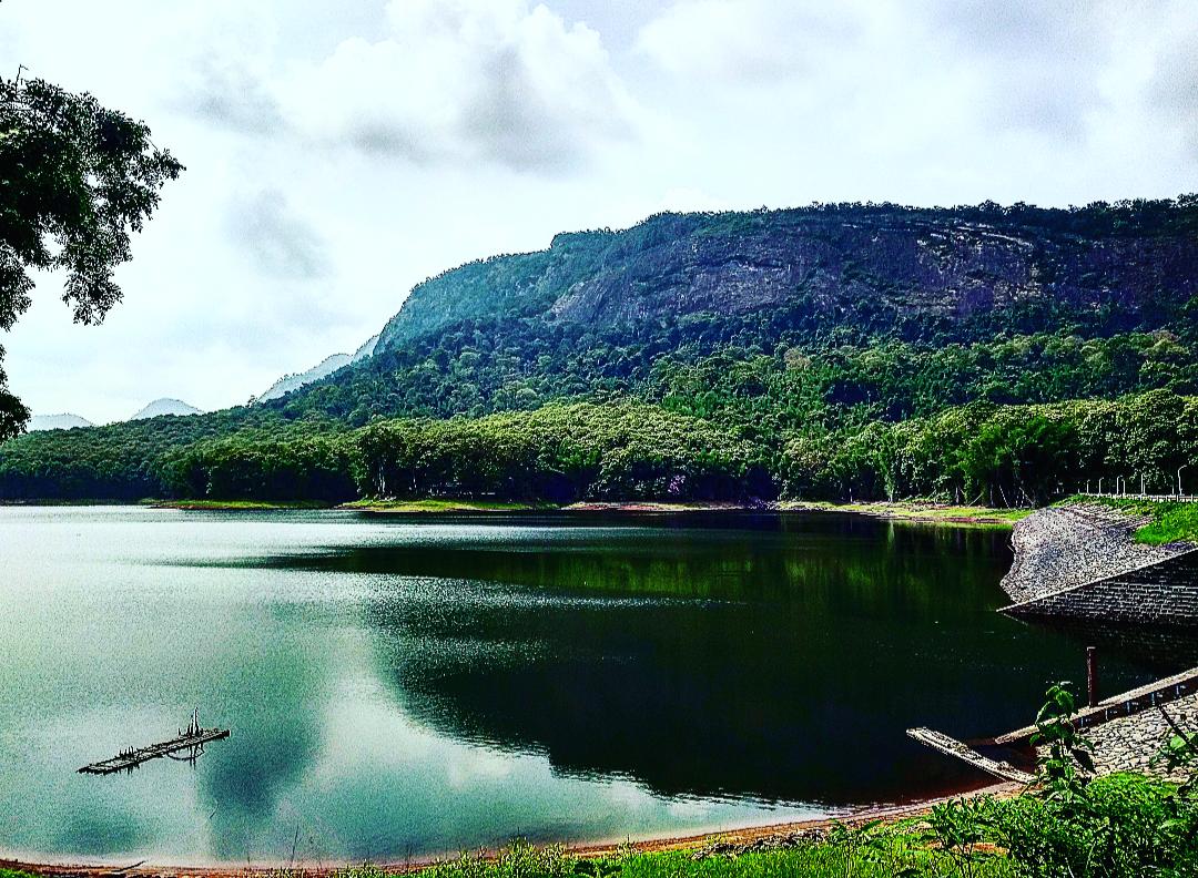 Photo of Parambikulam Tiger Reserve Private Tourism By kavya neelakandan