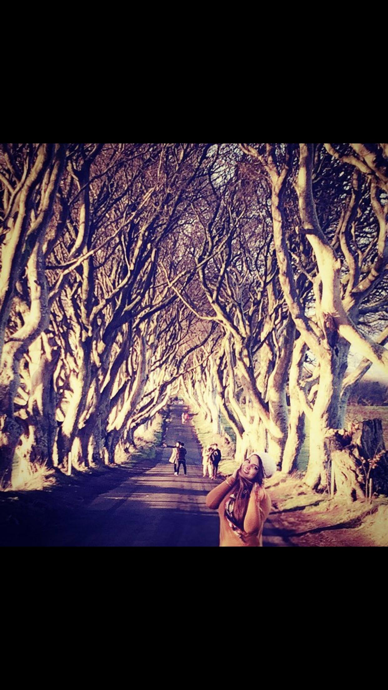 Photo of Belfast By aayushi gupta