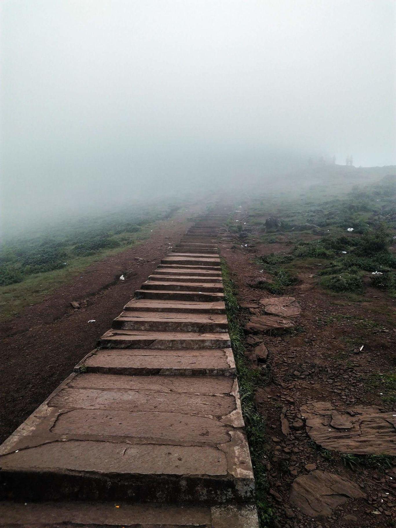 Photo of Mullayanagiri By AVin Xavier