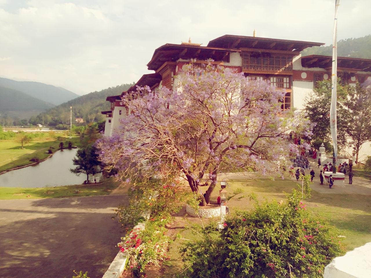 Photo of Paro Taktsang By Shikha Jha Mallik