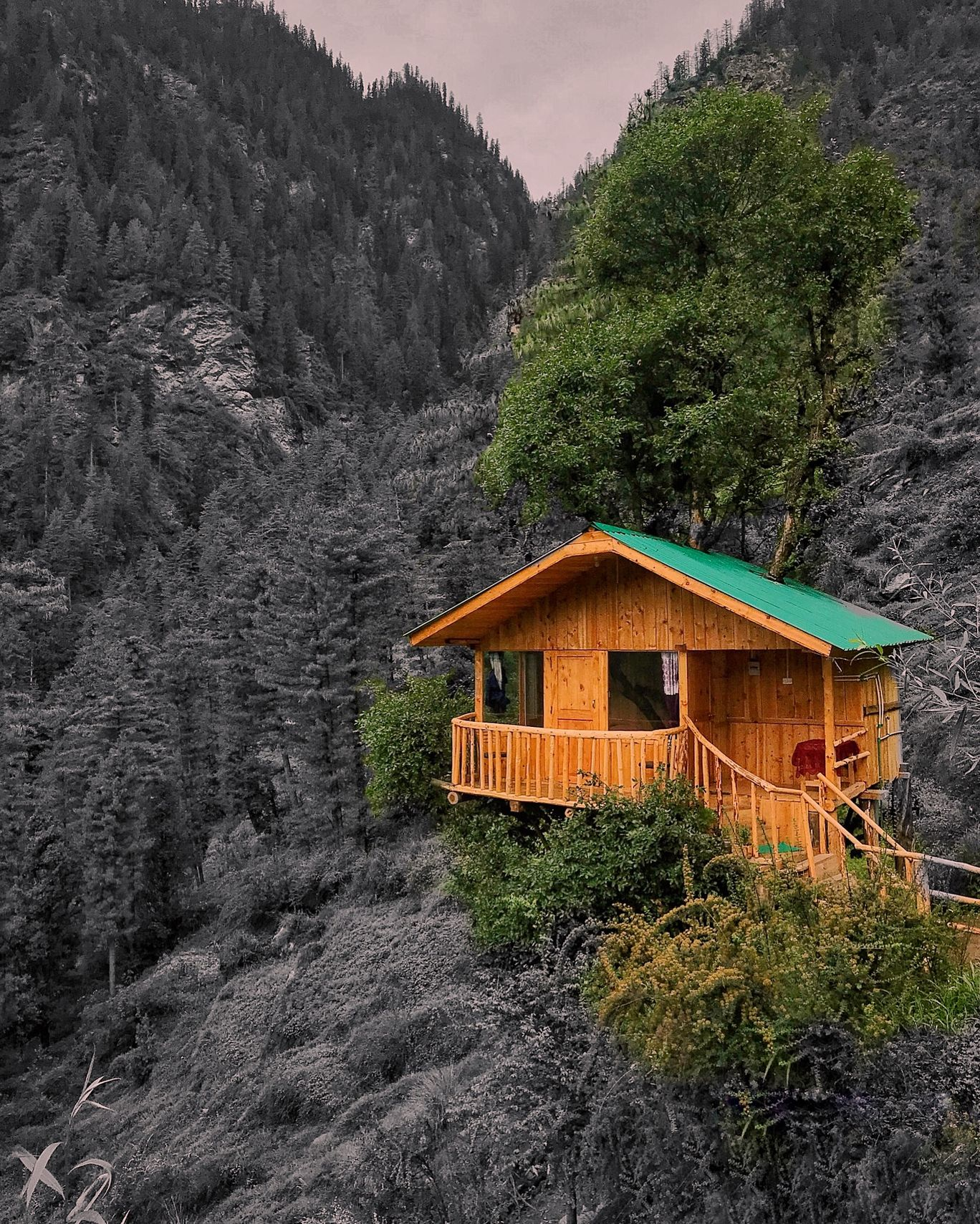 Photo of Himachal Pradesh By Aditi