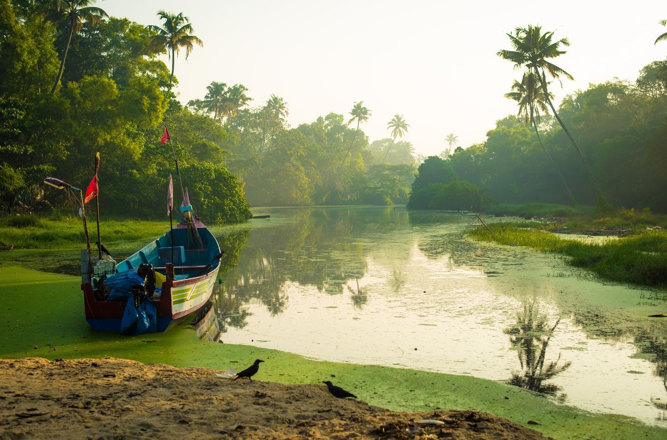 Photo of Kerala By Kumar Prashant