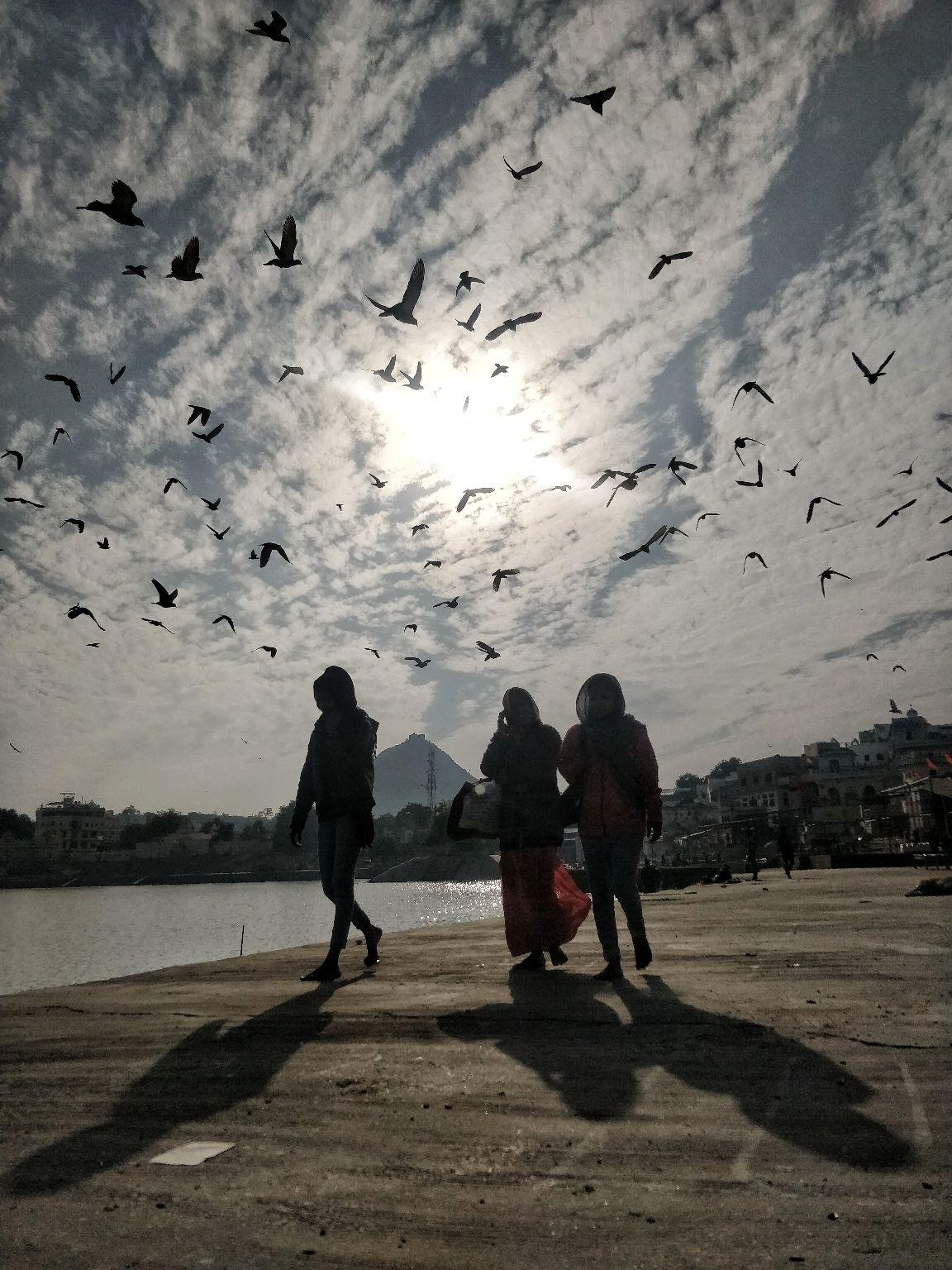 Photo of Pushkar By Nasir Imam