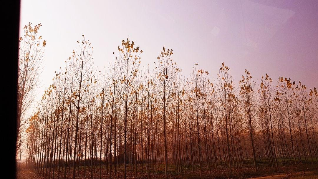 Photo of Himachal Pradesh By Geetu Gambhir