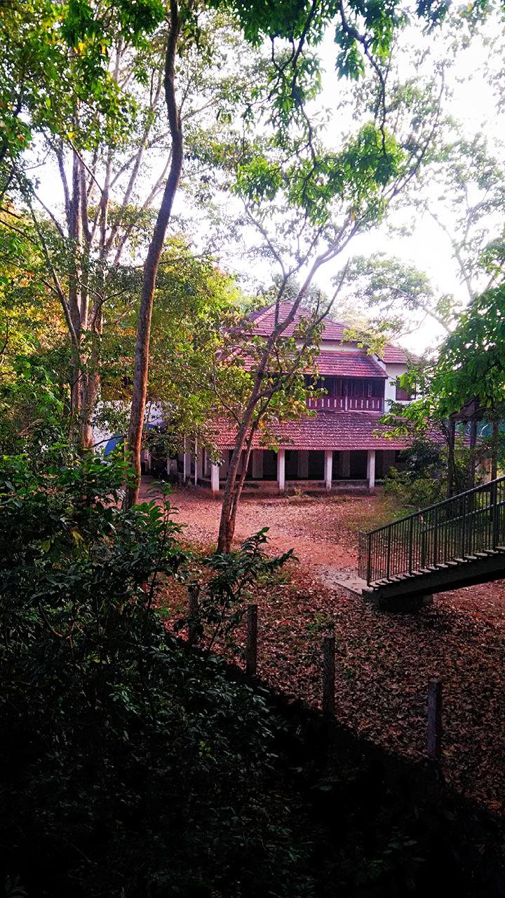 Photo of Nilambur Forest IB By Ruchita shinde