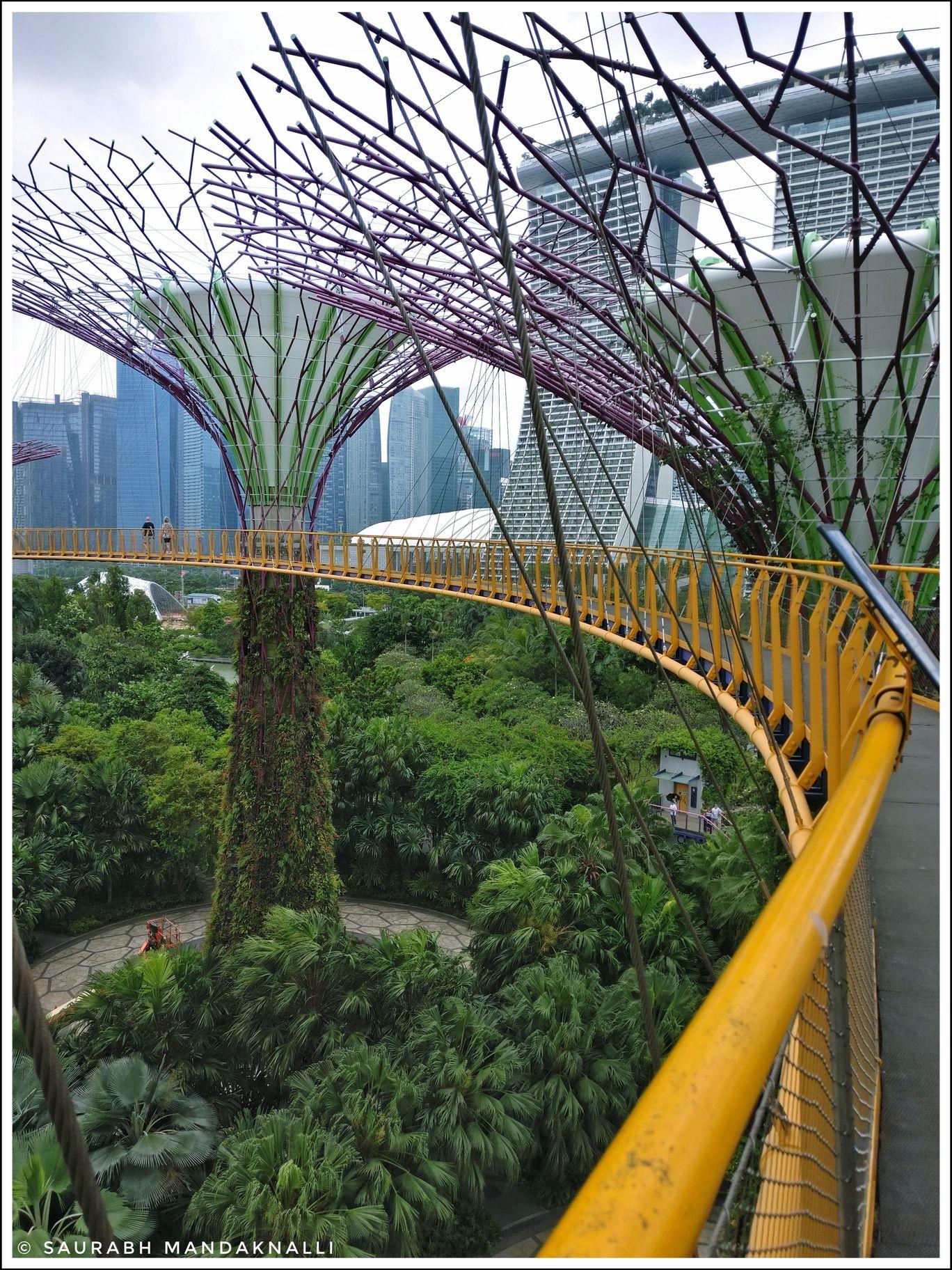 Photo of Singapore By Saurabh Mandaknalli
