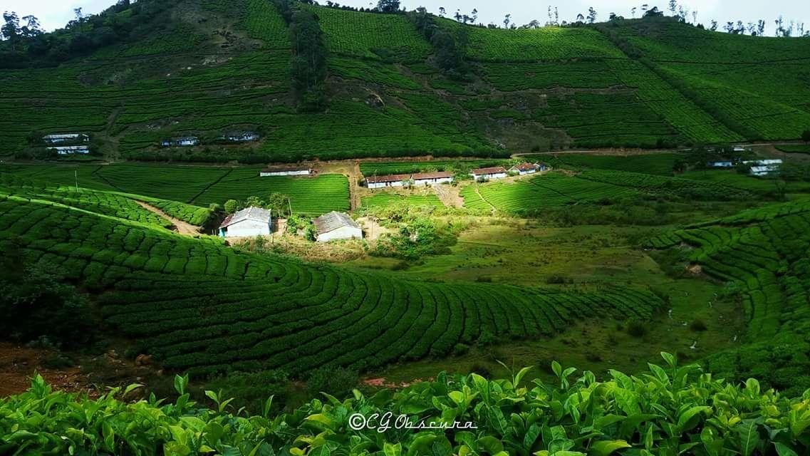 Photo of Megamalai By Gopi Krish
