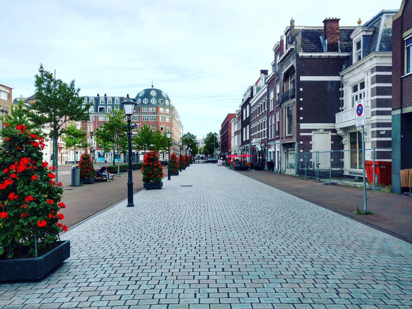 Photo of The Hague By Abhishek Kumar