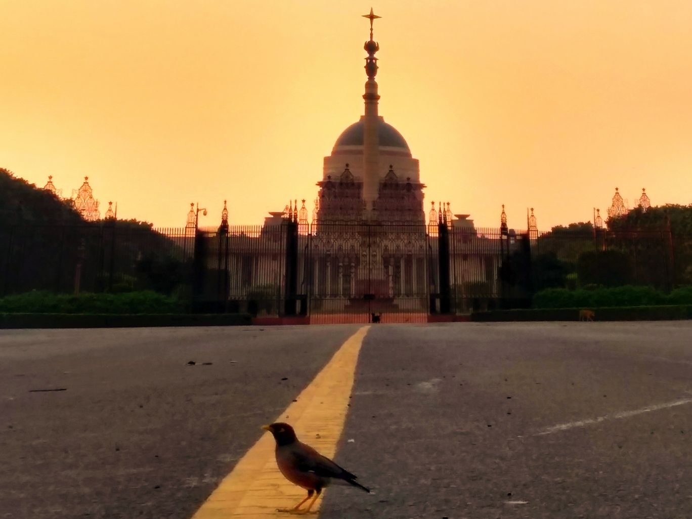 Photo of India By Venkata Sai Rahul Nagapuri