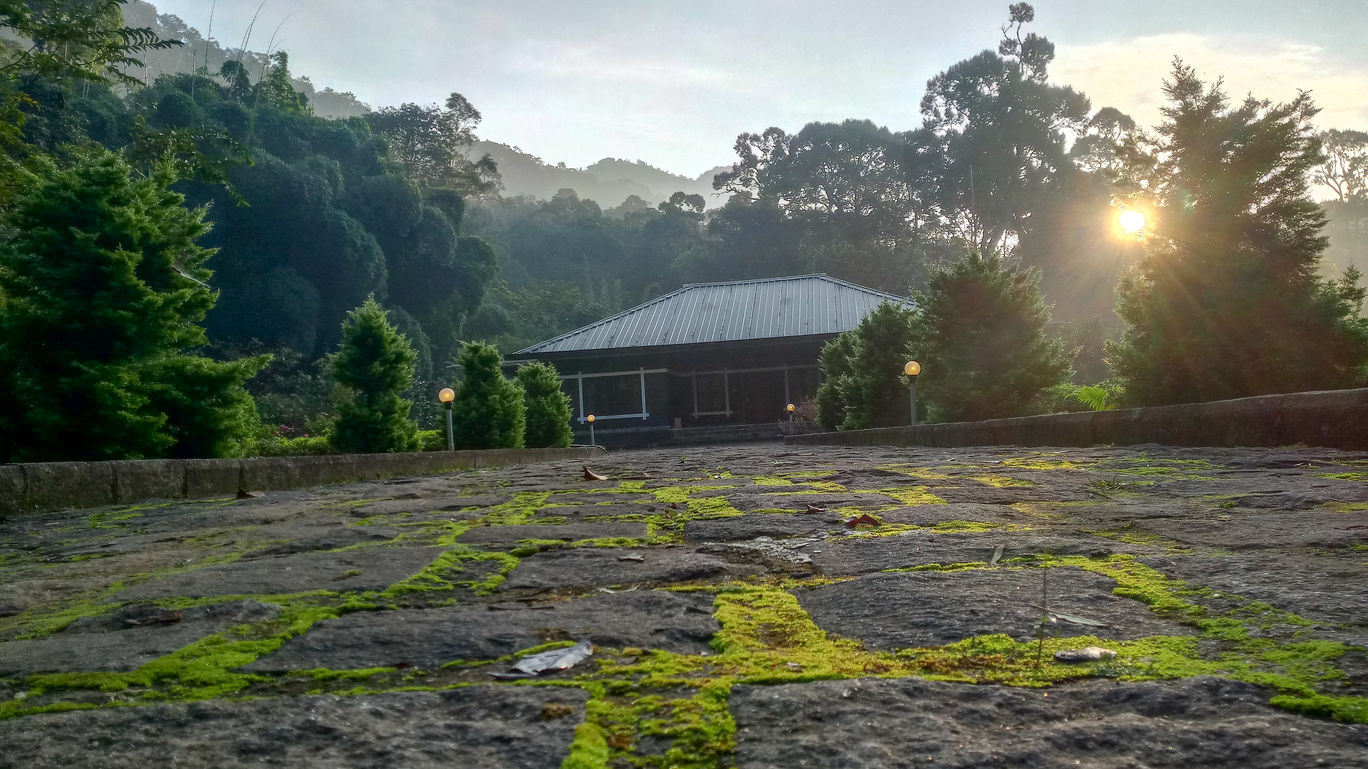 Photo of Munnar By Abijith B