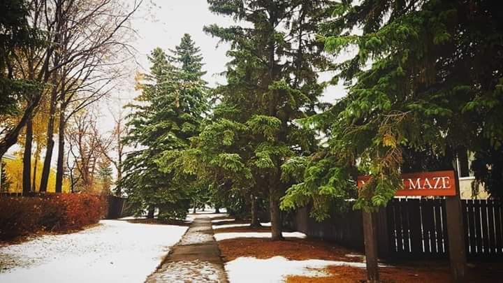 Photo of Edmonton By Komal Sharma