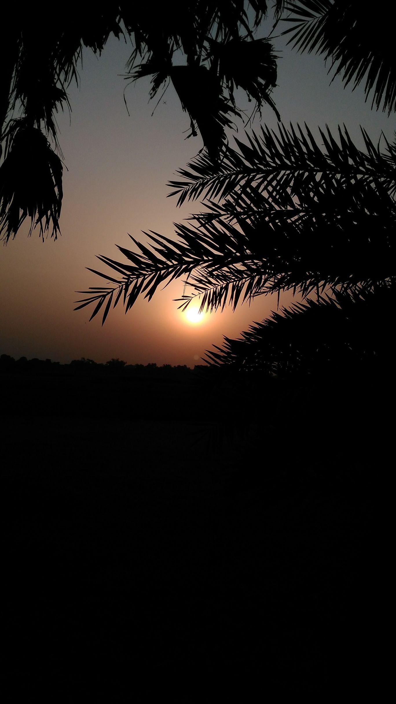 Photo of Goa By Rajat Sharma