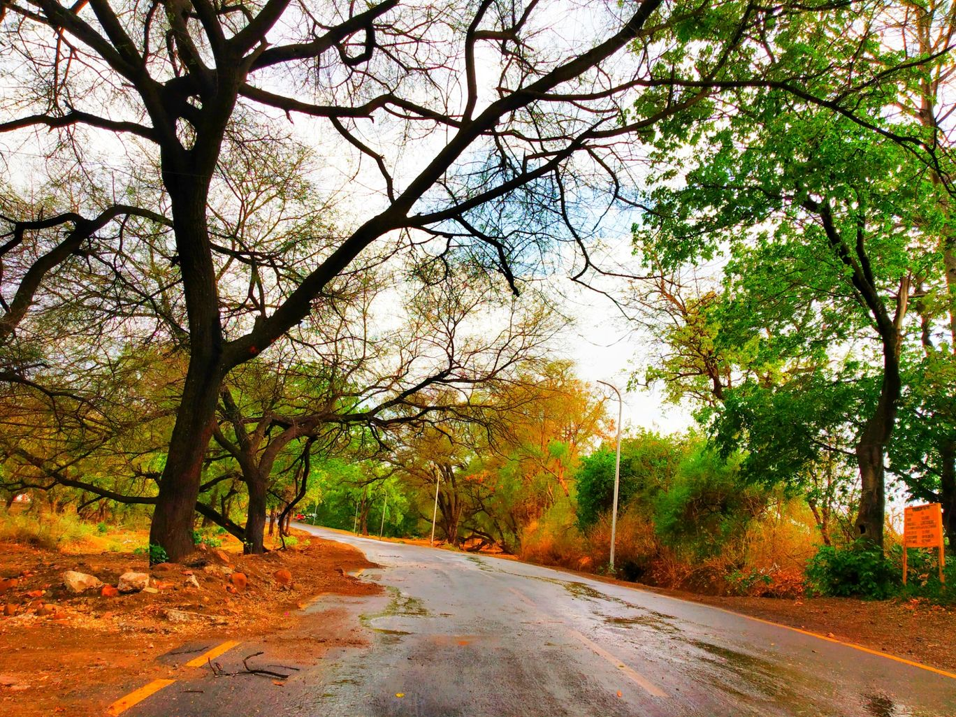 Photo of Pachmarhi By Akshat sundrani