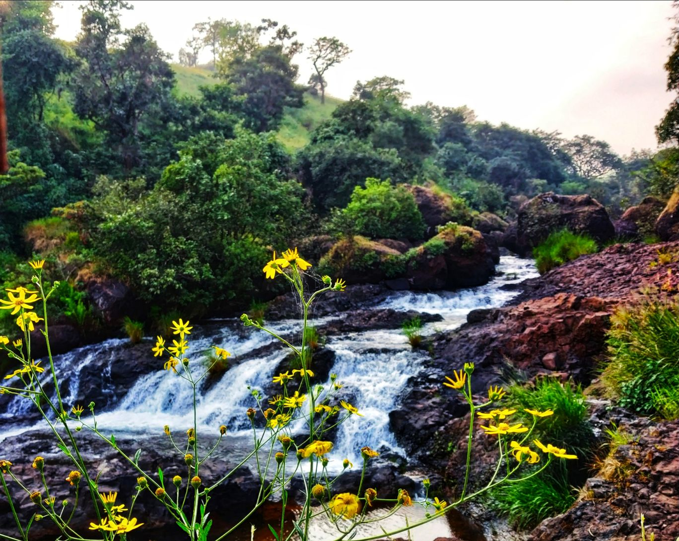 Photo of Thoseghar Waterfall By Rutuja Pawar