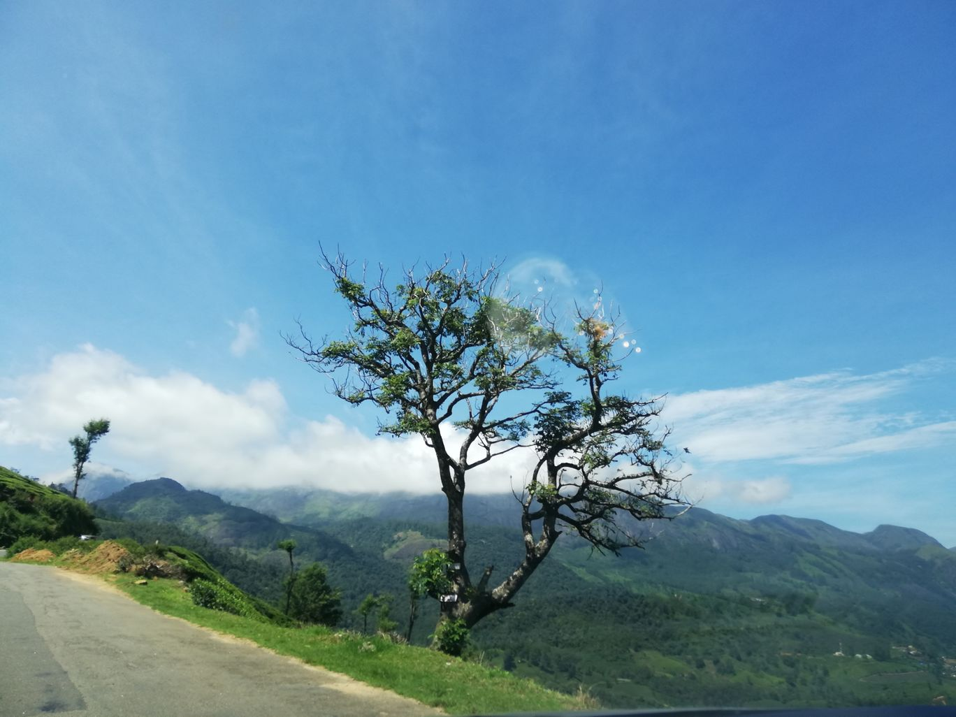 Photo of Munnar By Neethu Mohan