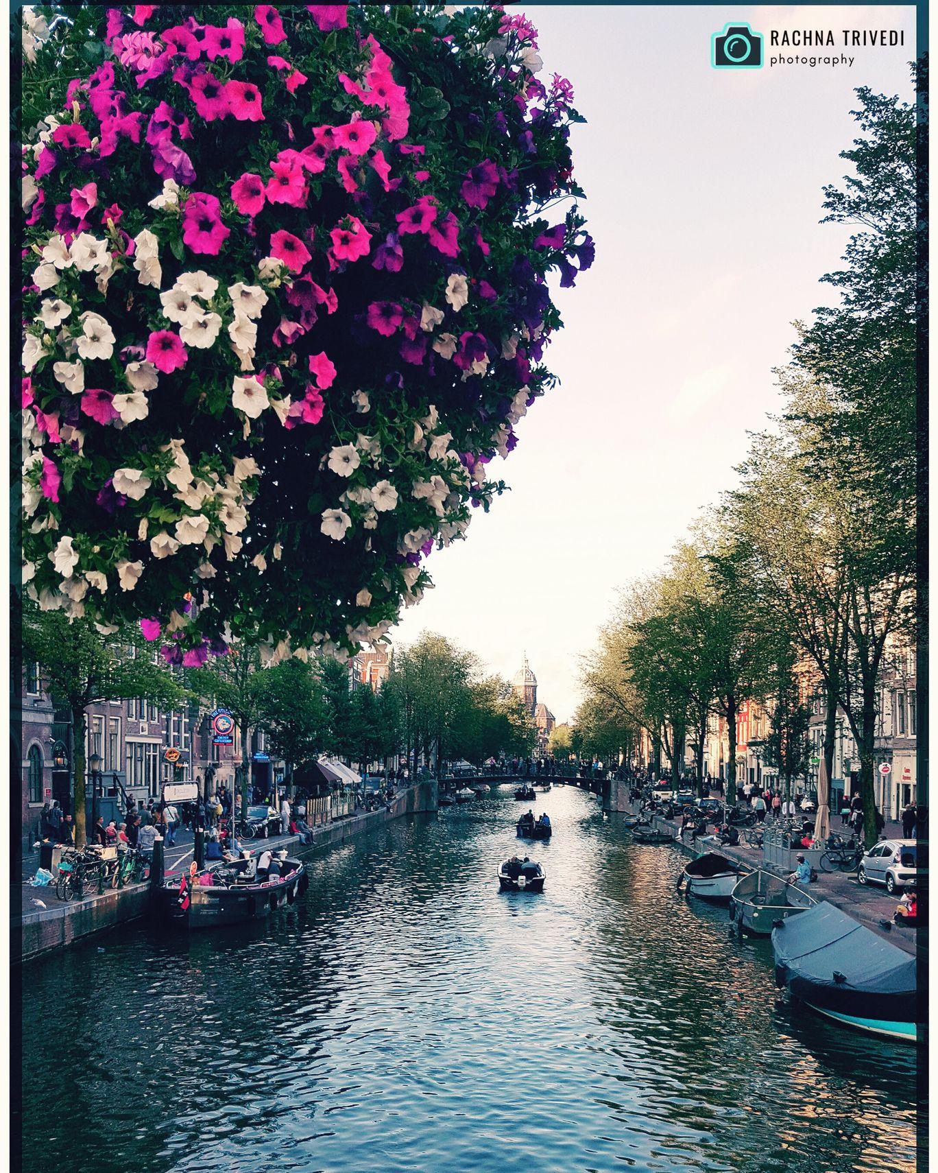 Photo of Amsterdam By Rachana Trivedi