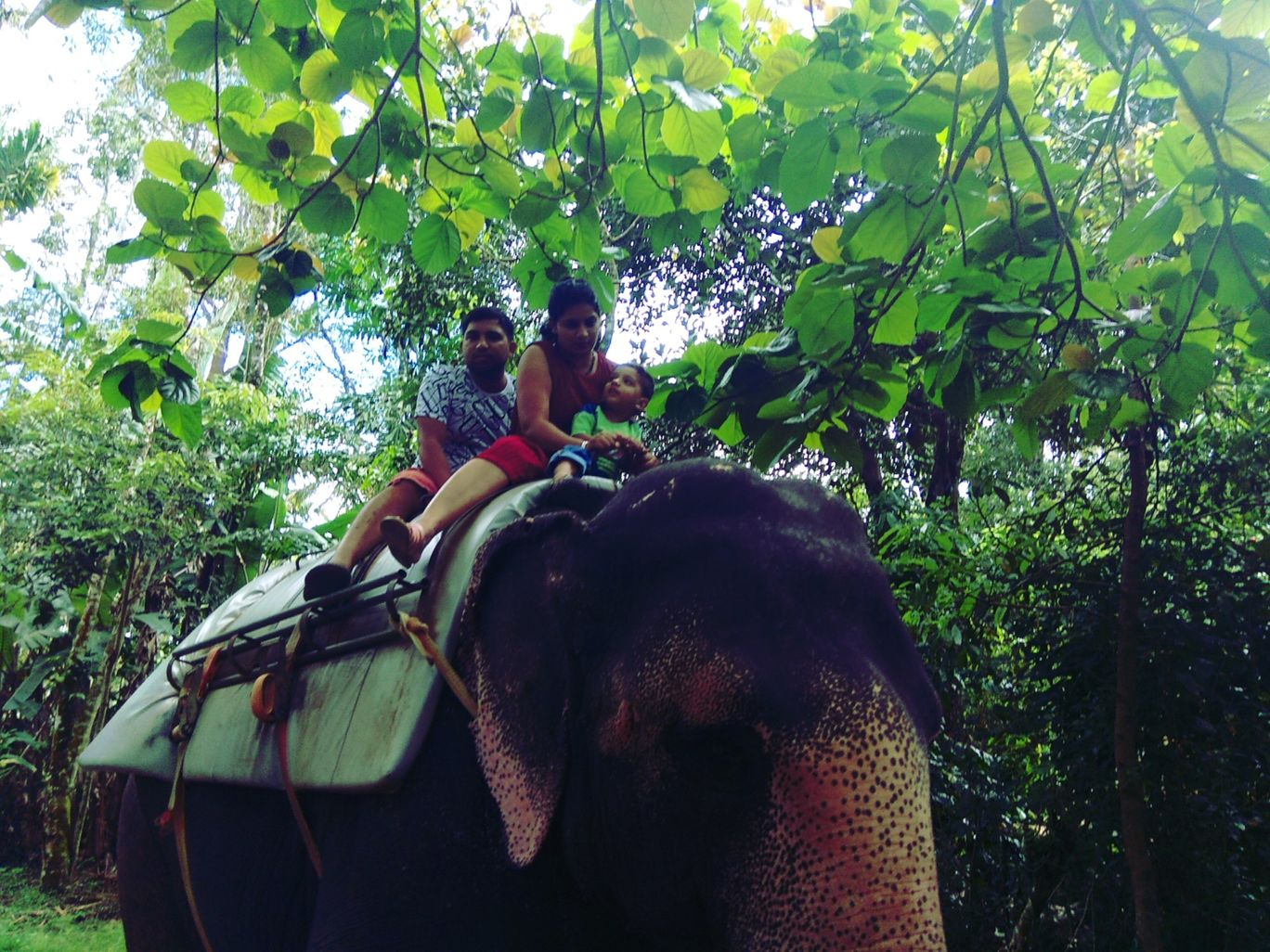 Photo of Kerala By Komal Garg