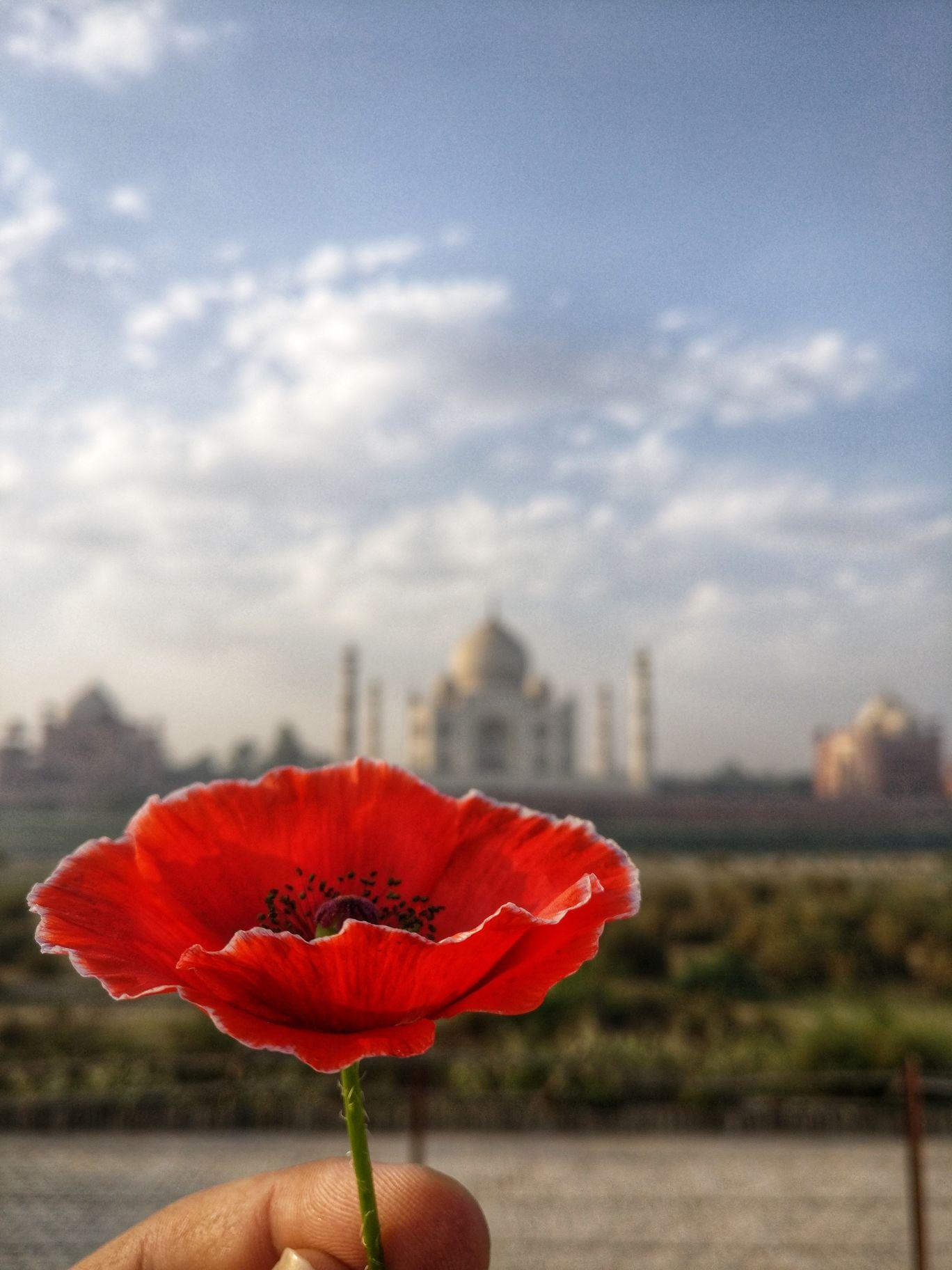 Photo of Agra By Akshay Batra
