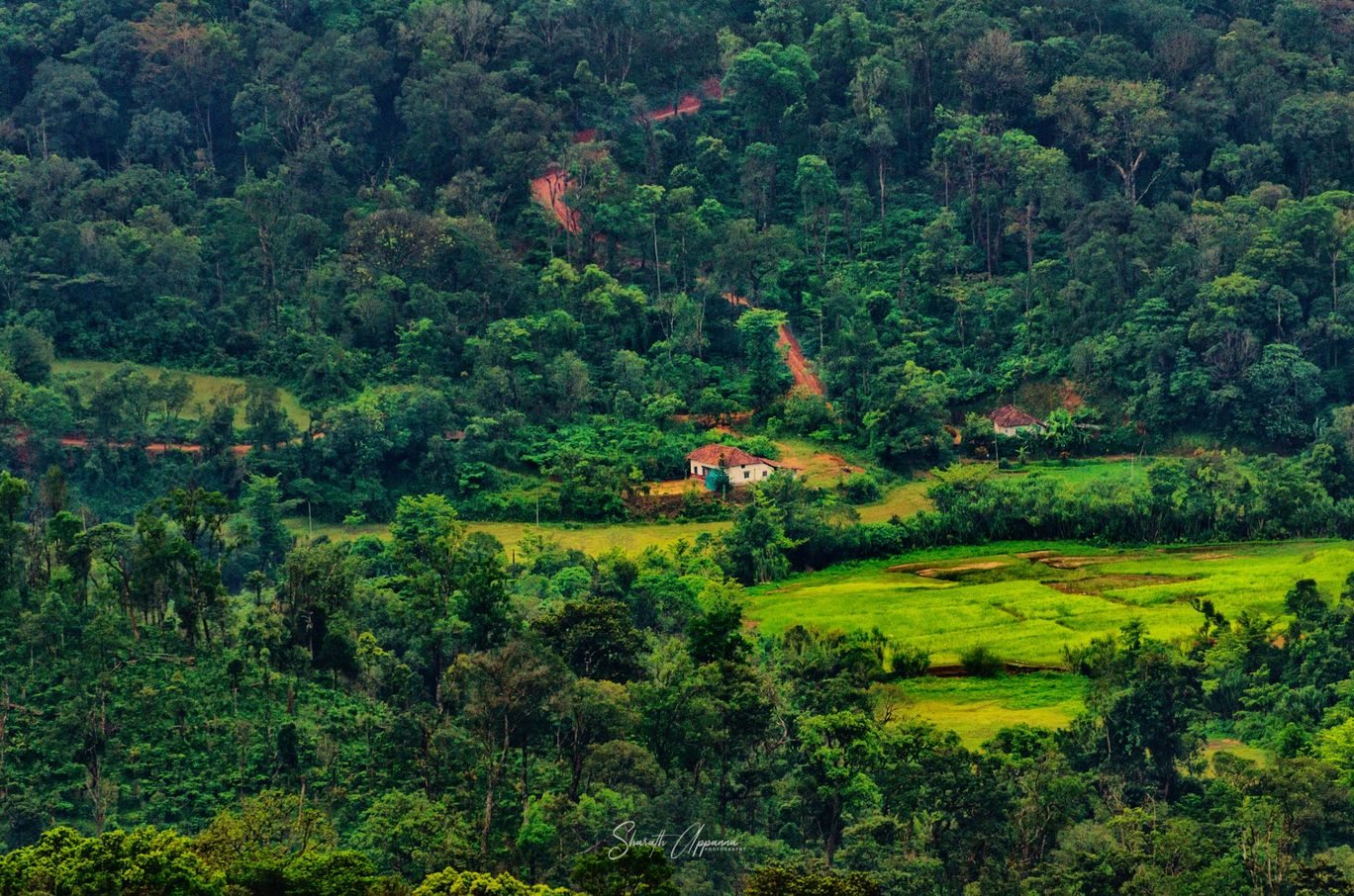 Photo of Coorg By sharath