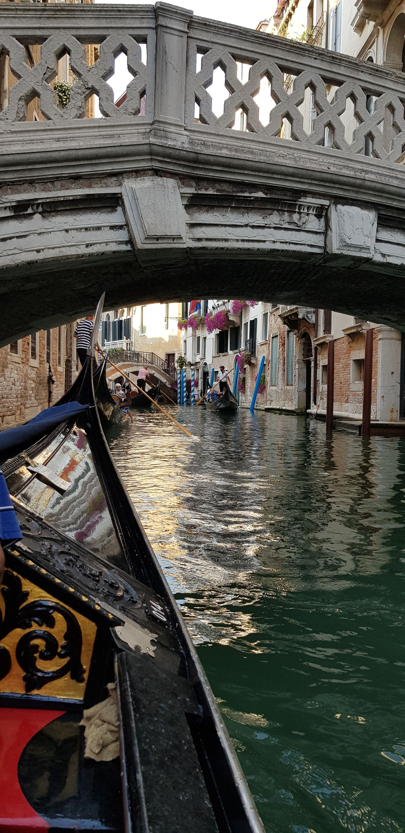 Photo of Venice By Lydia M Roy
