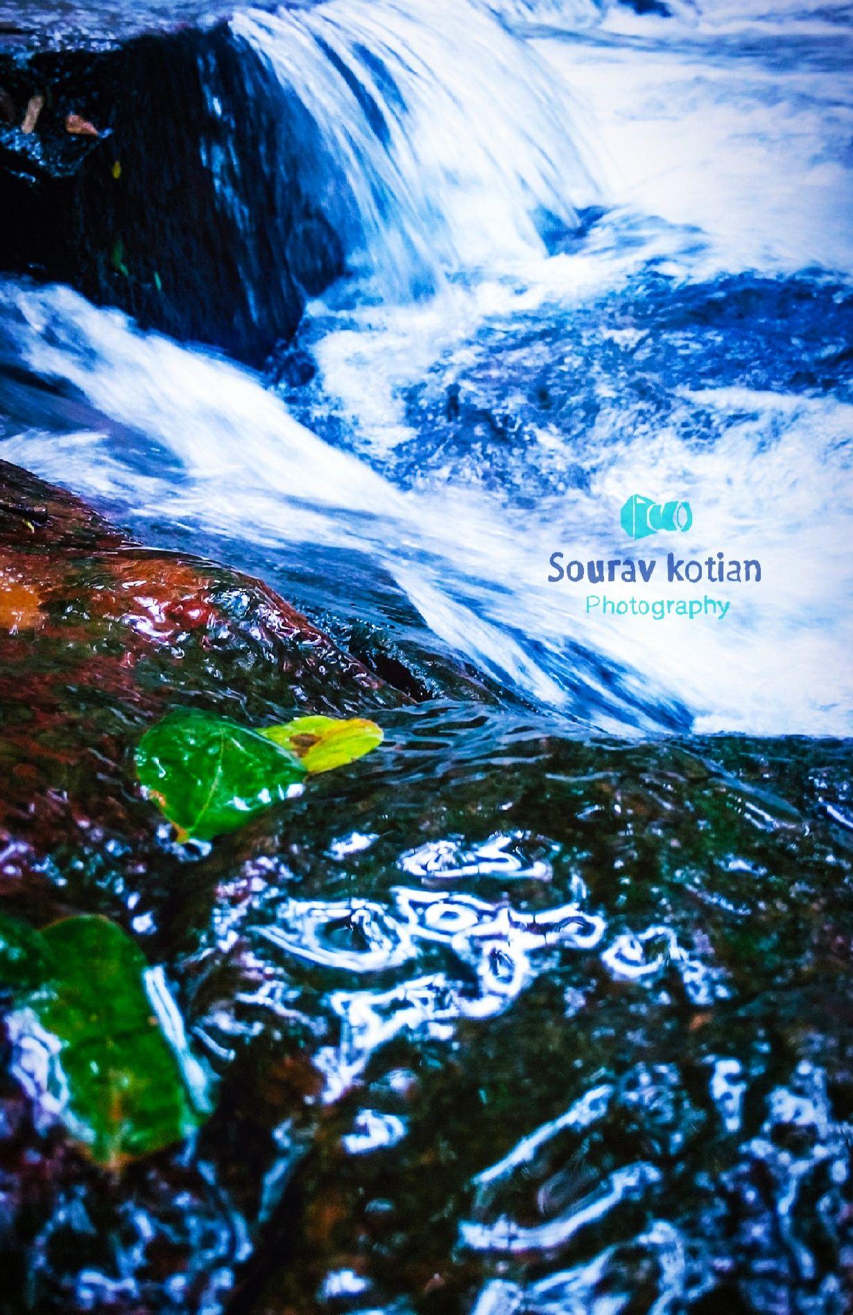 Photo of Kudupu By Sourav Kotian
