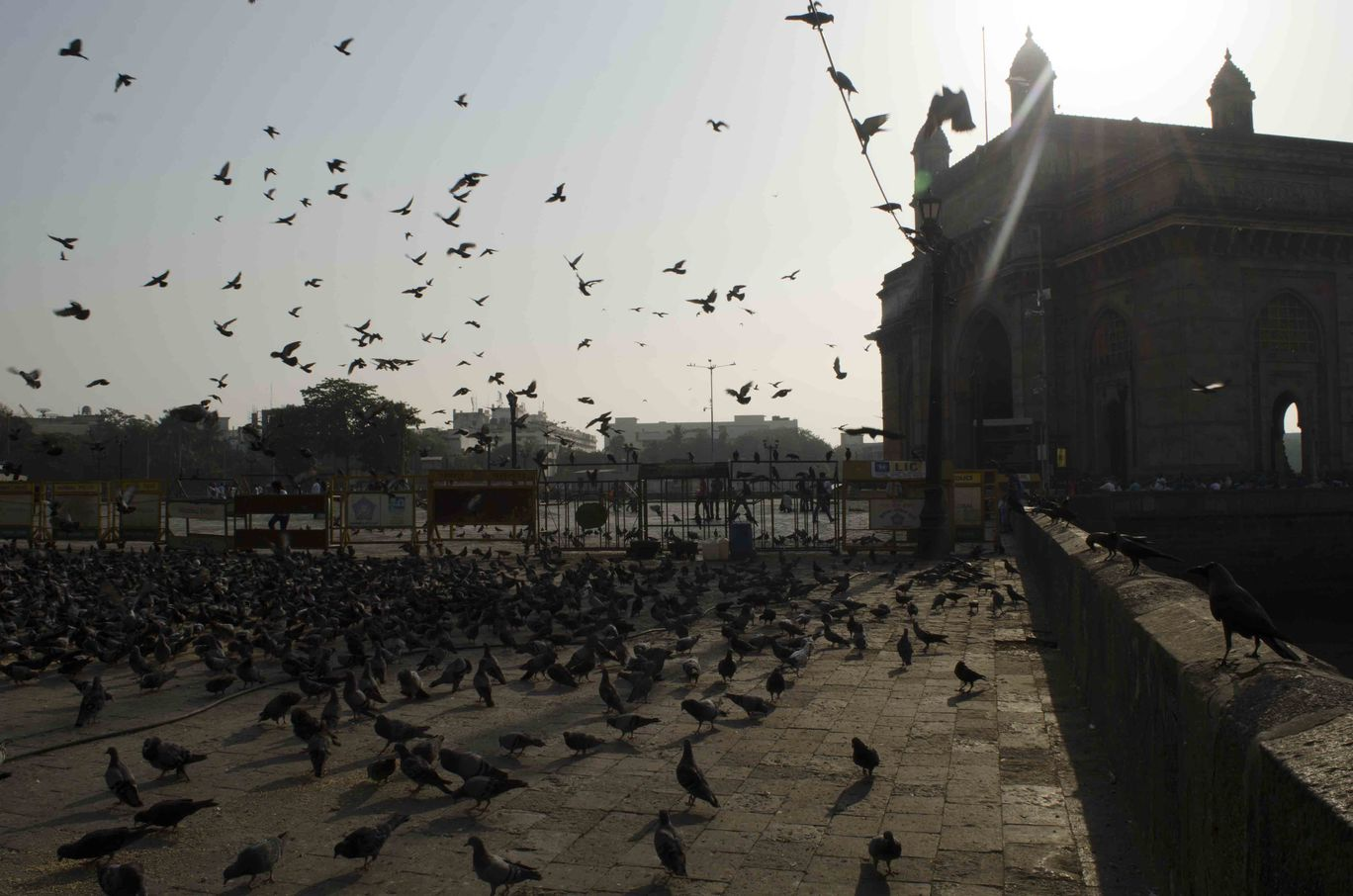 Photo of Mumbai By Badal Mallick