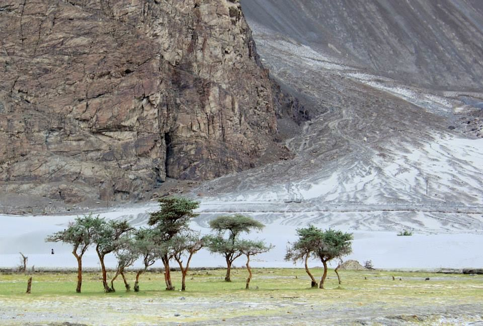 Photo of Nubra Valley By IndraJeet Ghorpade