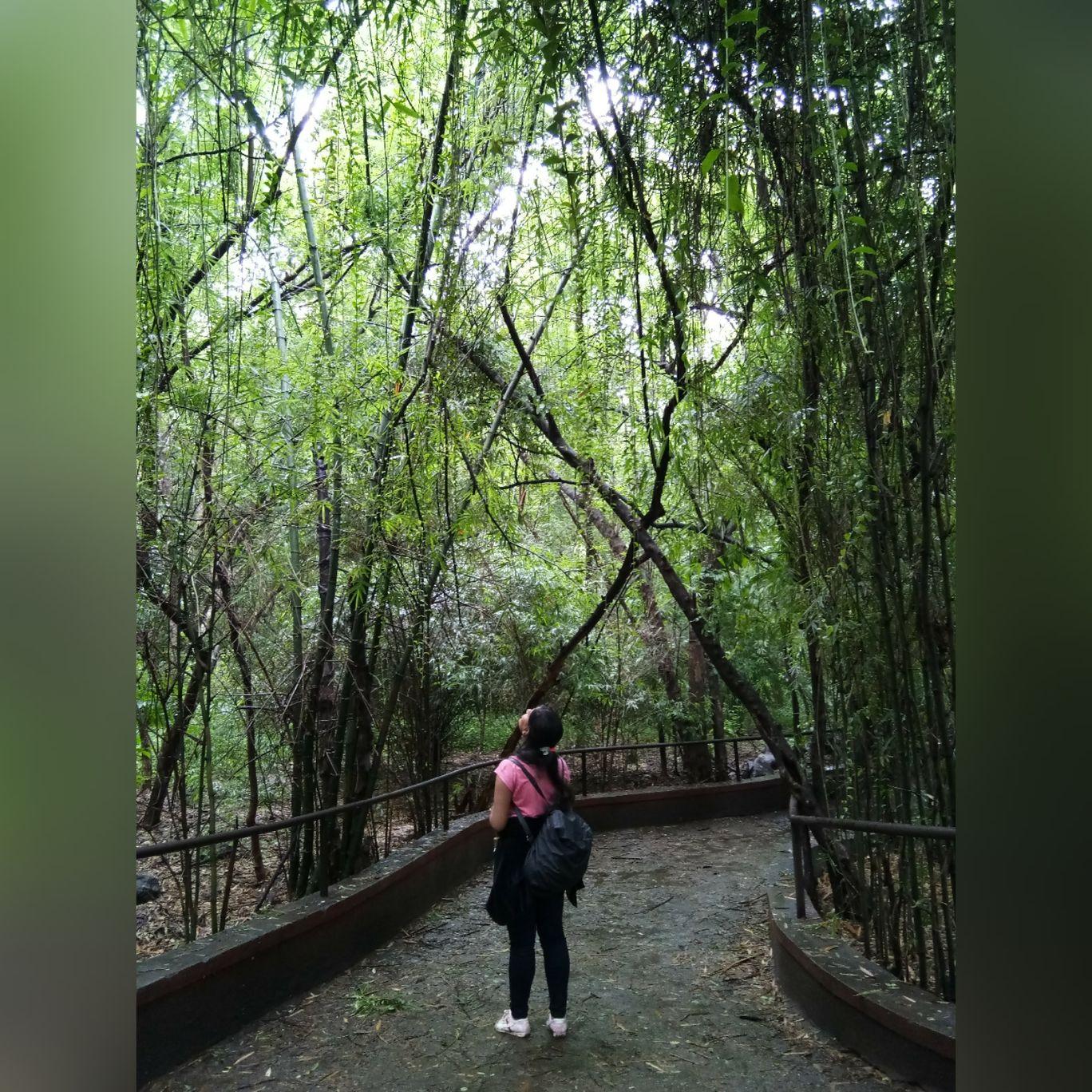 Photo of Rajiv Gandhi Zoological Park By aditi lad