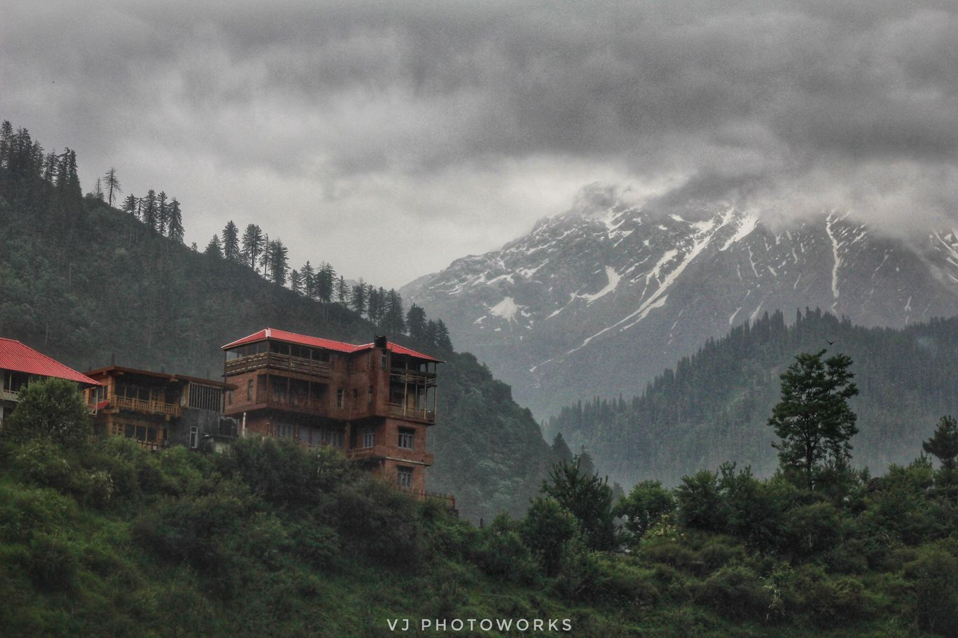 Photo of Tosh By vijay sharma