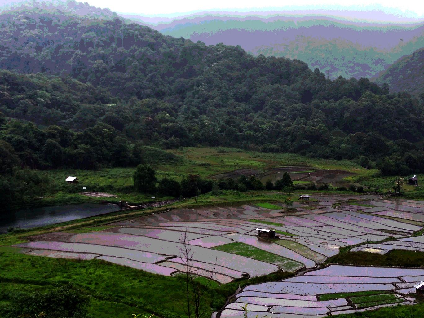 Photo of Nagaland By Siddhi Sardesai