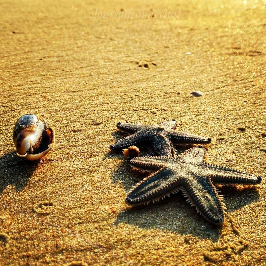 Photo of Kapu Beach By coloursofwanderlust