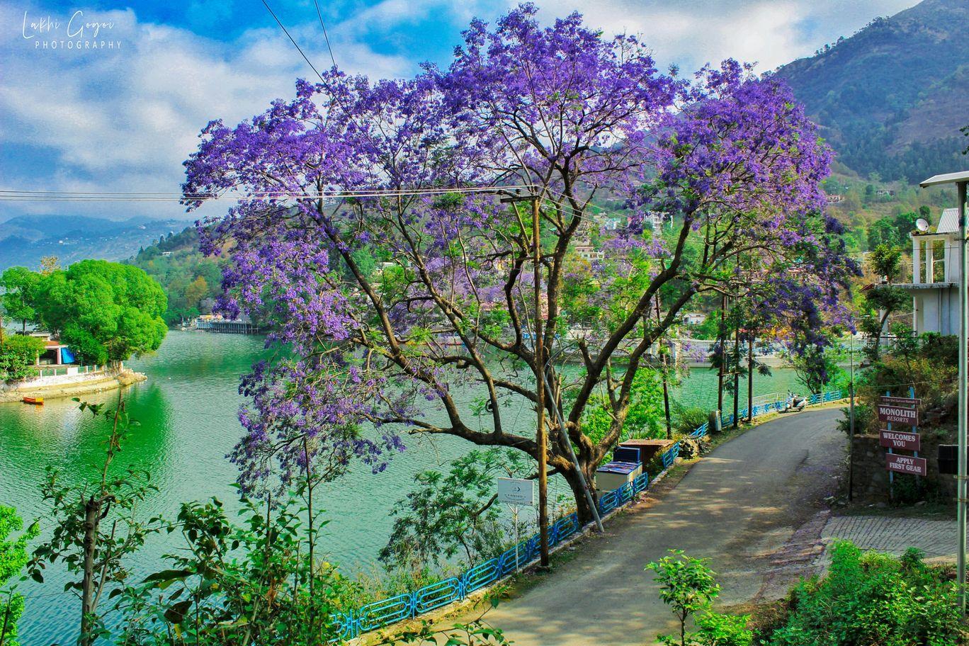 Photo of Bhimtal By Lakhi Gogoi