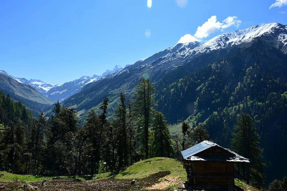 Photo of Himalayas By Tanvi Sawle