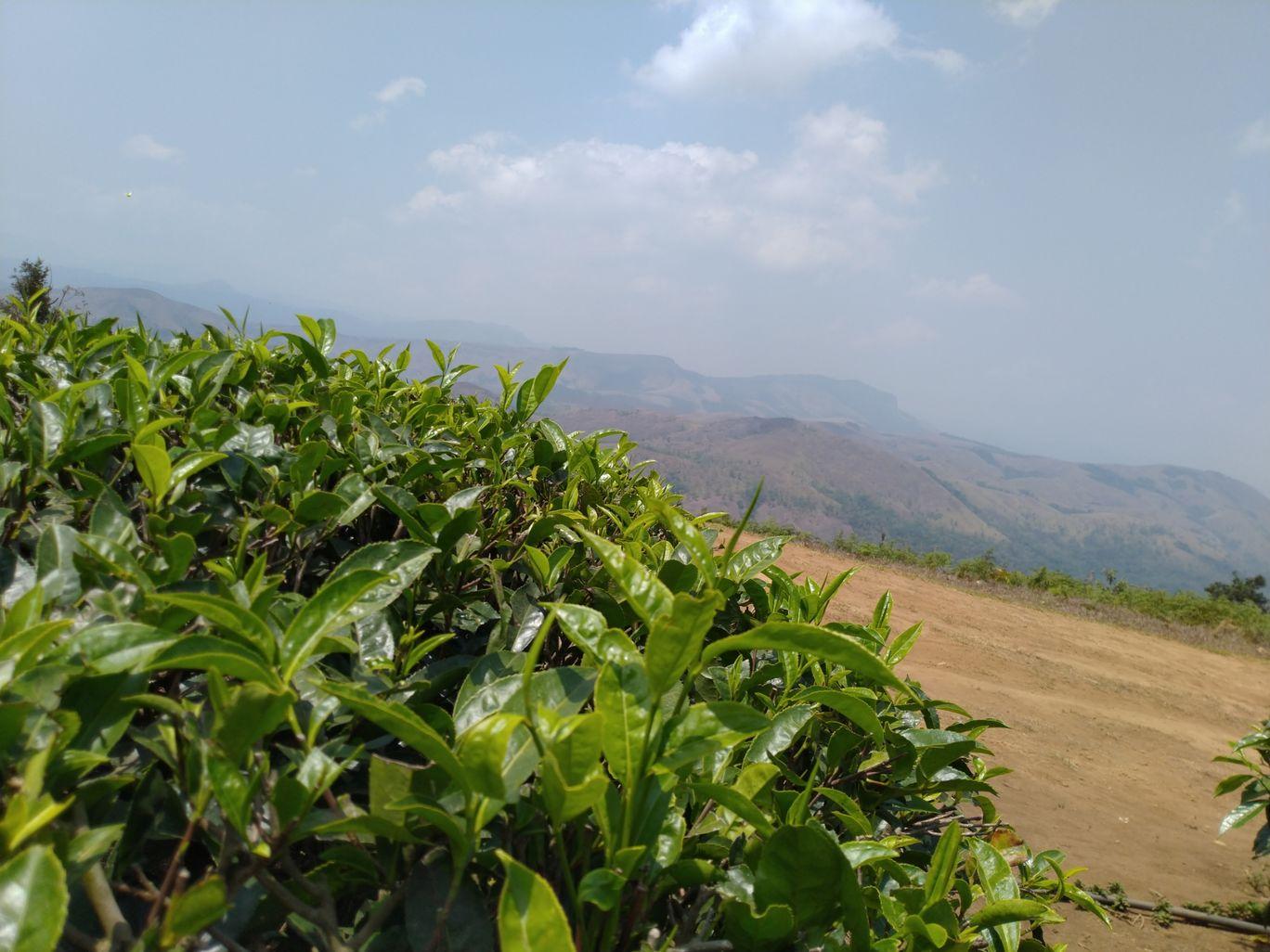 Photo of Kalvari Mount By Shruthi R