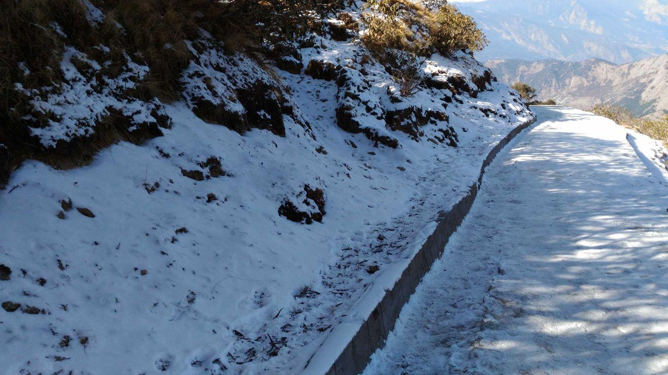 Photo of Chopta Tungnath Chandrashila Trekking By Sourav Poddar