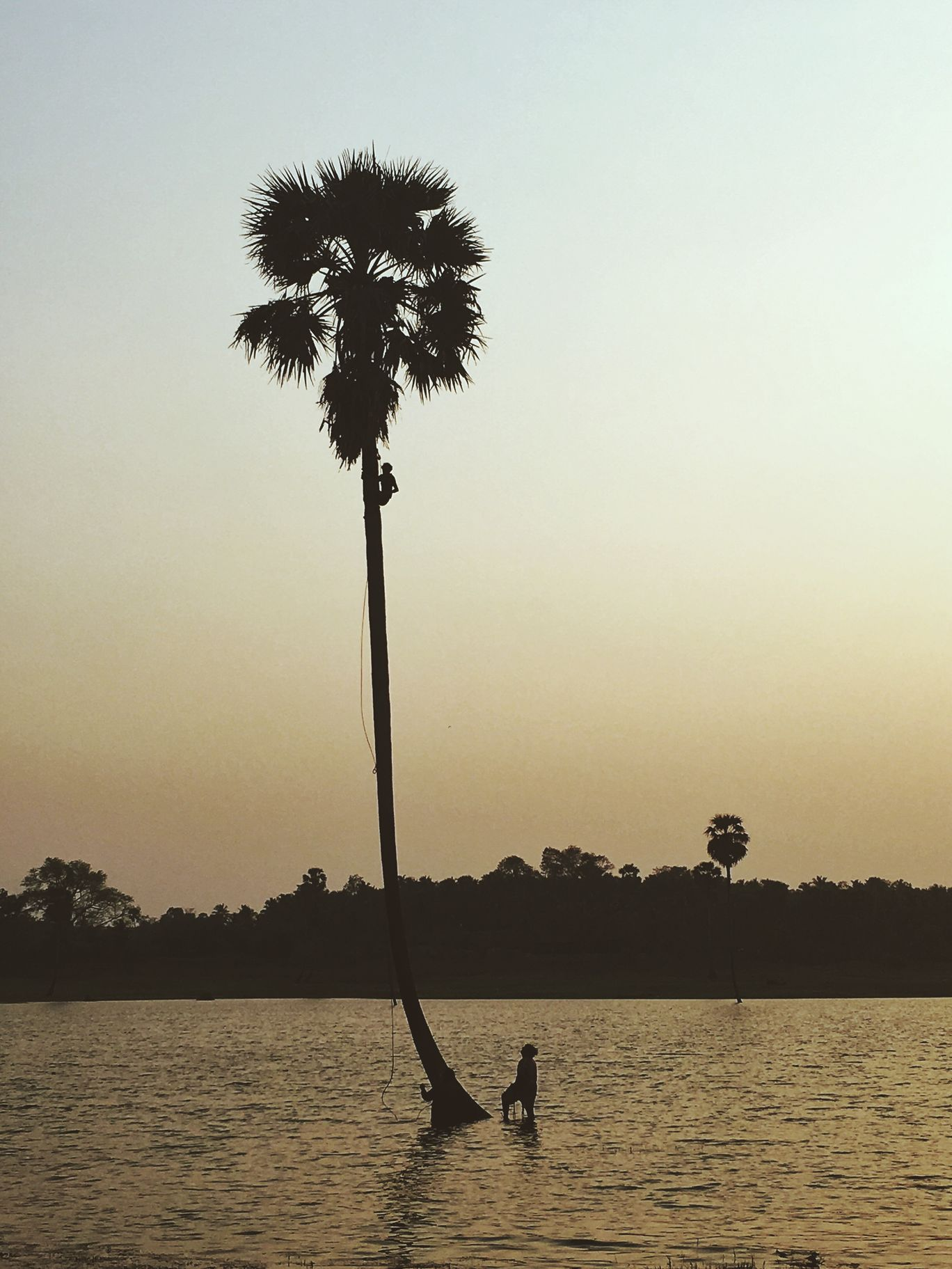 Photo of Palakkad By Sreelal992
