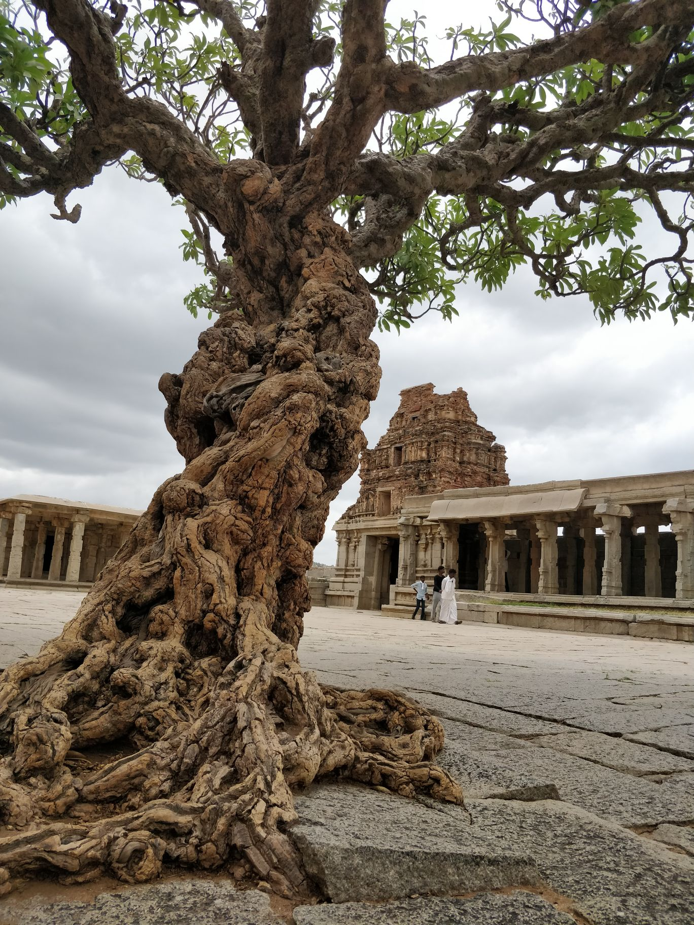 Photo of Vitthala Temple By Shreya Jain