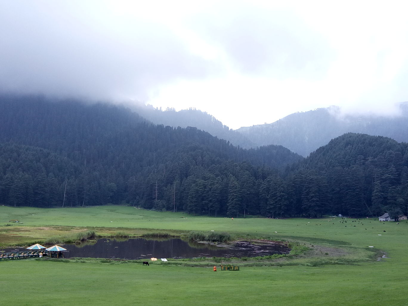 Photo of Khajjiar By Monika Manhas