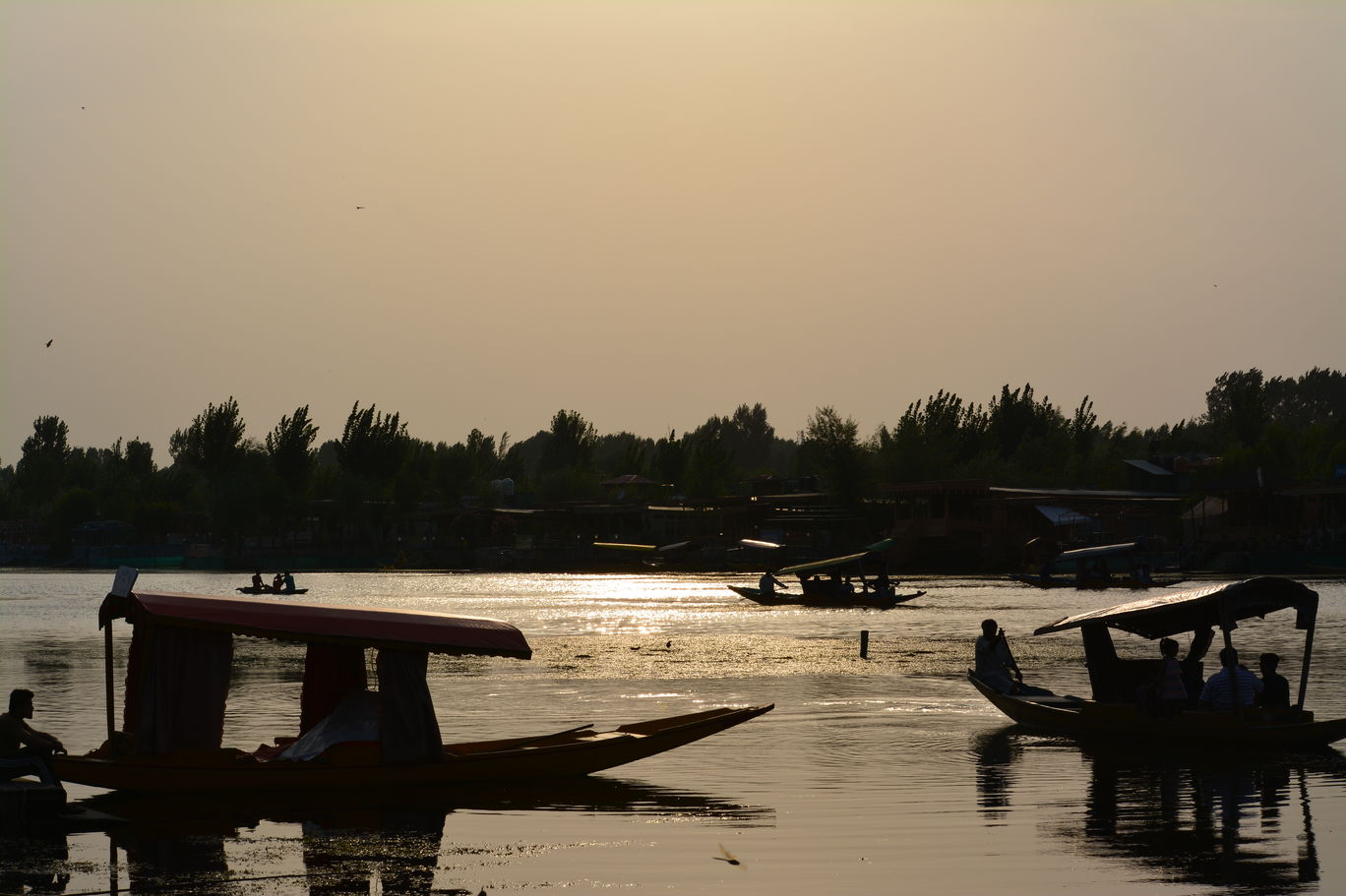 Photo of Dal Lake By Aina Ali