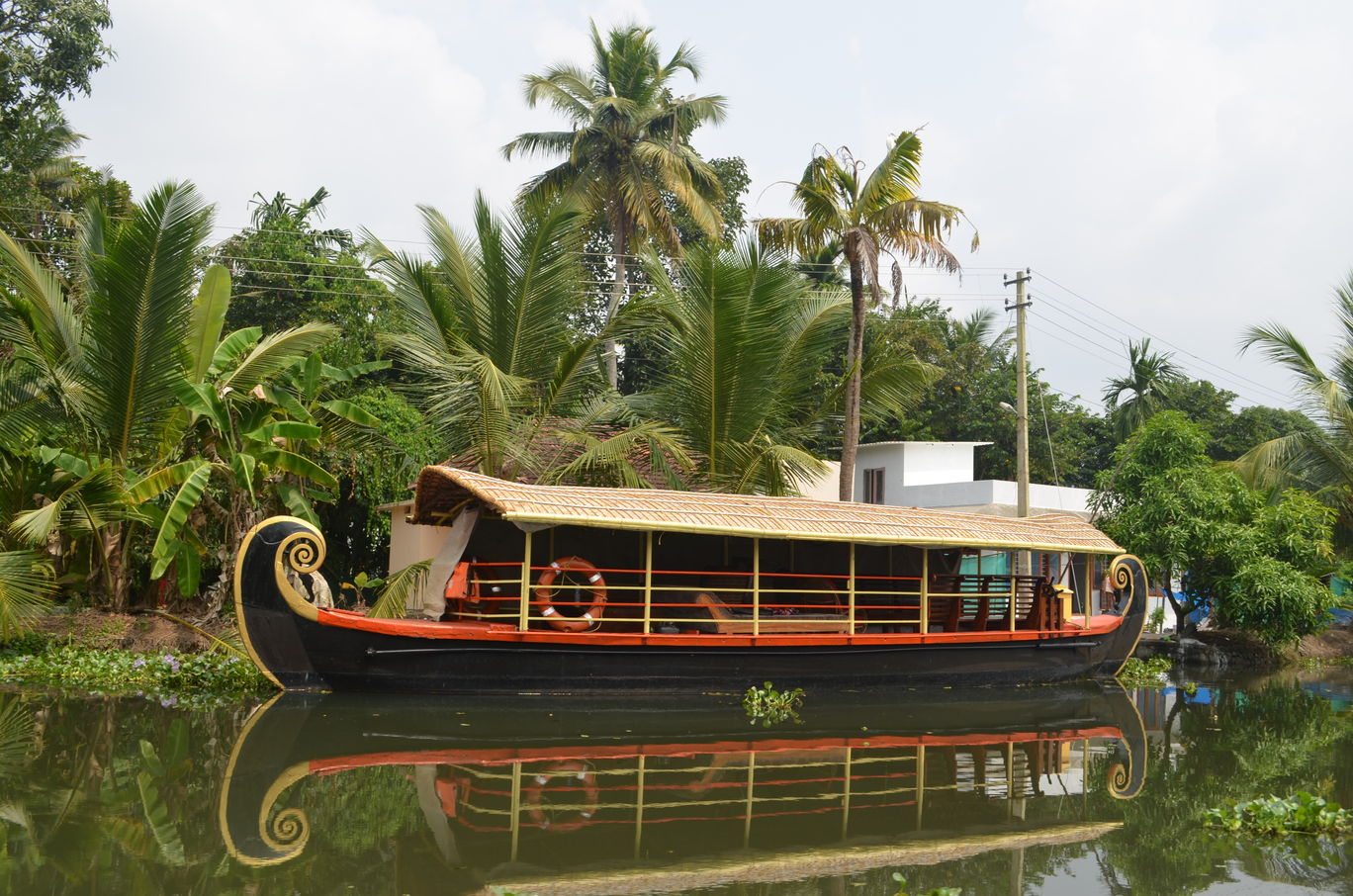 Photo of Kerala By Ritika