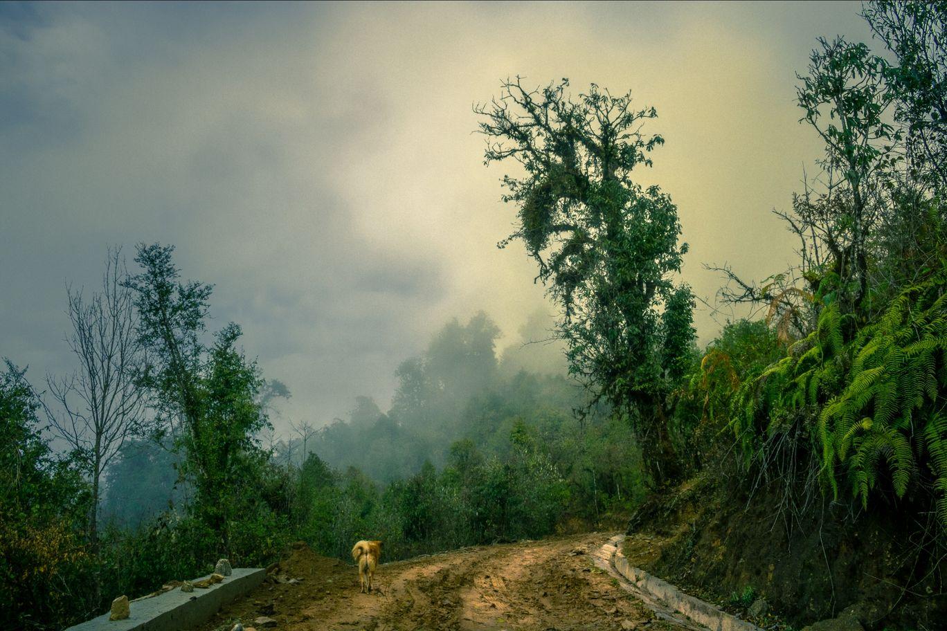 Photo of Mulkarkha By Bibaswan Chakrabarty