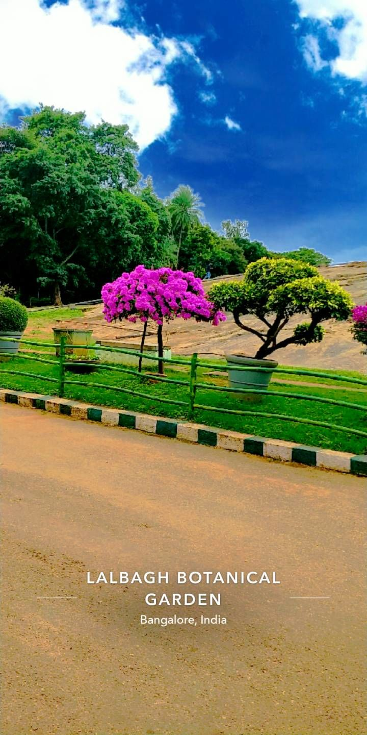 Photo of Lalbagh Botanical Garden By Shubham Garg