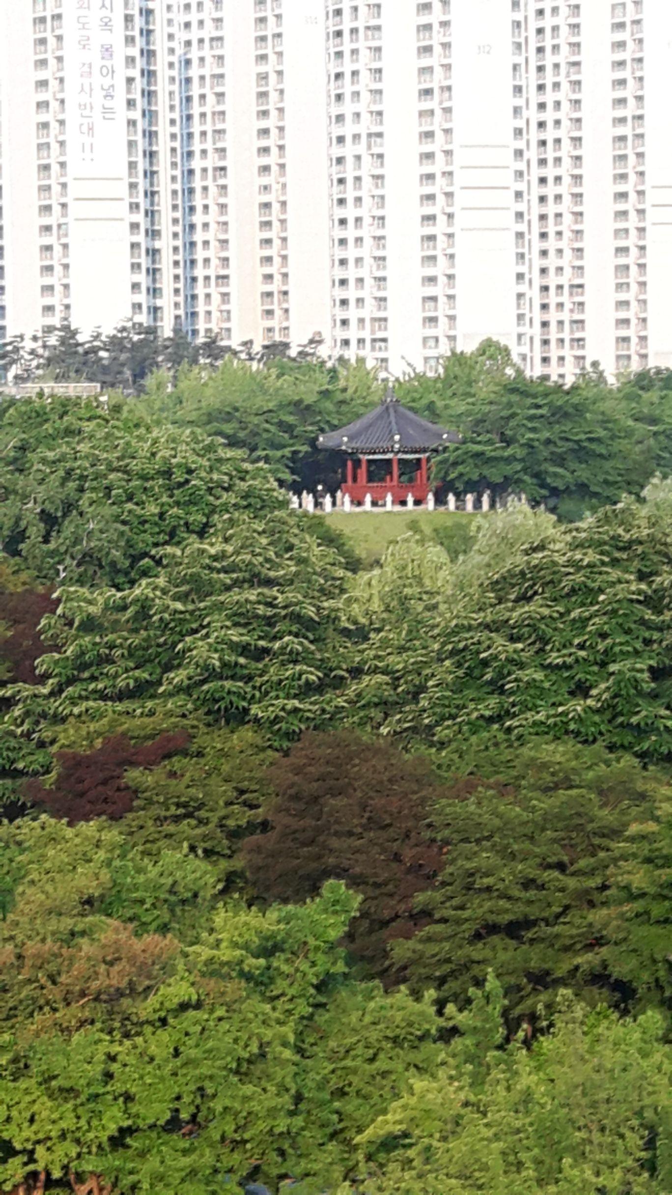 Photo of Seoul By gypsy trail