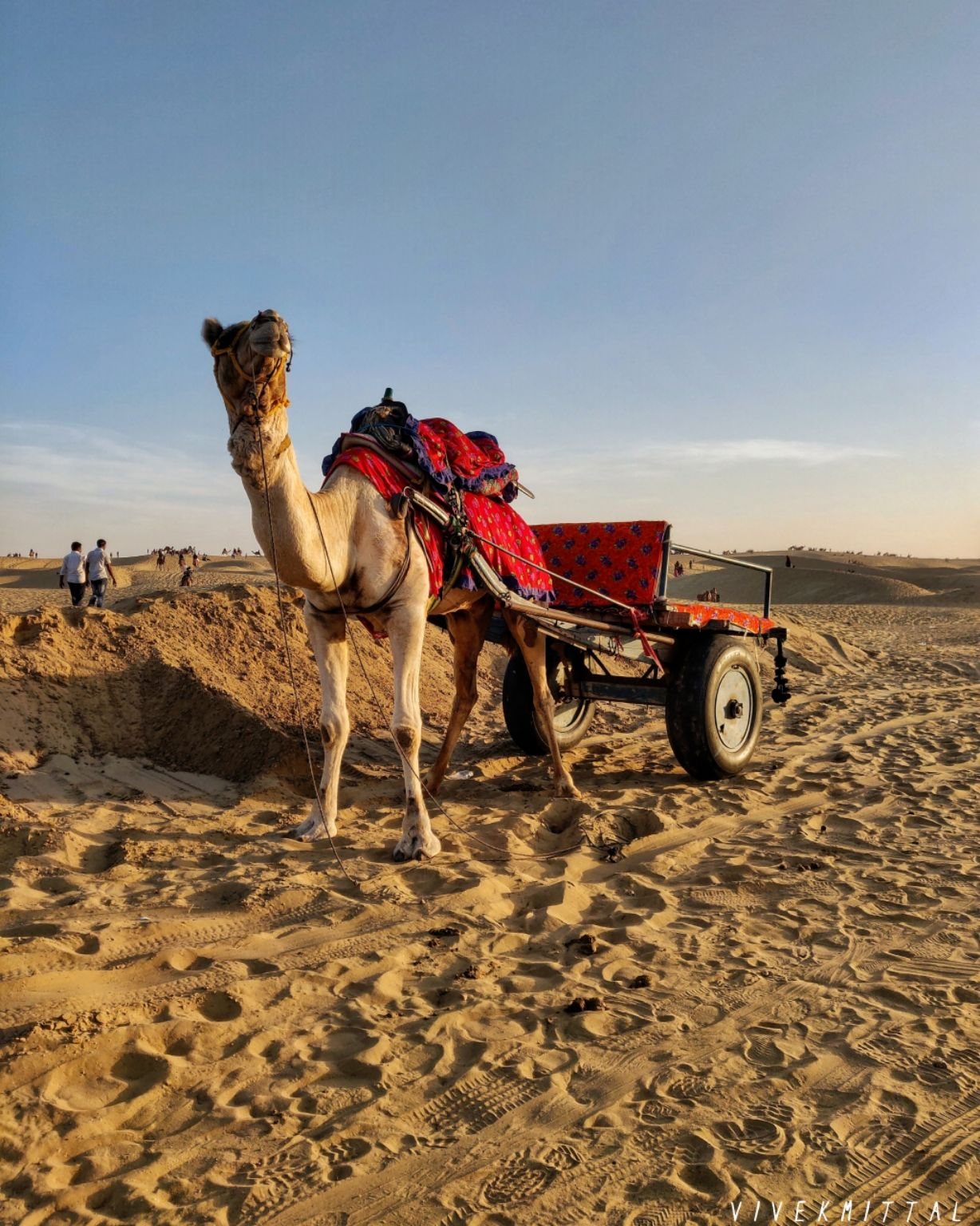 Photo of Sam Sand Dunes Desert Safari Camp Jaisalmer By Vivek mittal